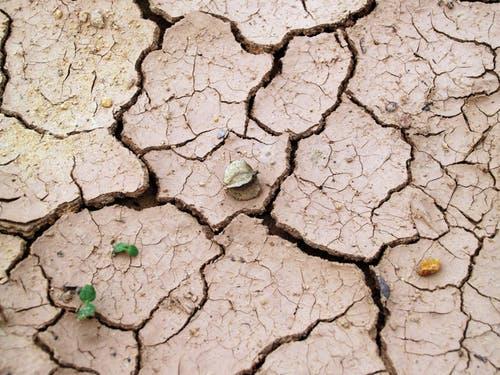 zemlja je jedna od 5 feng shui elemenata, kreira potencijal stabilnosti i dugovječnosti